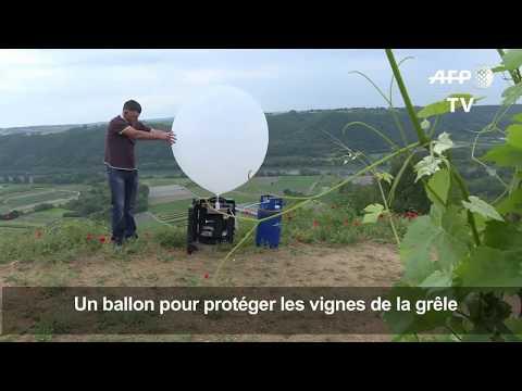 Reportage de l'Agence France Presse - Présentation de LAICO un outil de lutte active contre la grêle