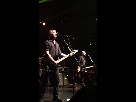 Stranglers - Golden Brown - live