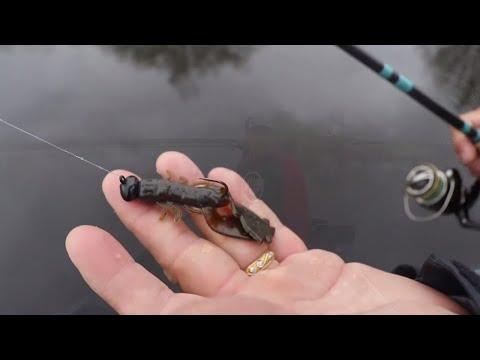Berkley Chigger Craw - Great Soft Plastic Crayfish Imitator That Works!