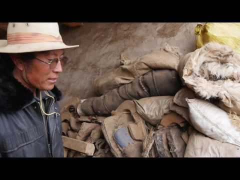Tibetan Nomad Material Culture of Sokpa Village