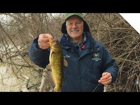 Early Season Bullhead And Catfish Fishing From Shore