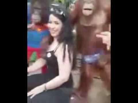 Full Download Monyet Pegang Susu Cewek