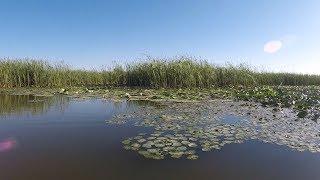 Пробная рыбалка в раскатной части дельты Волги. Рыбалка Астрахань