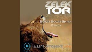 Boom Boom Shiva (Zelektor Remix)