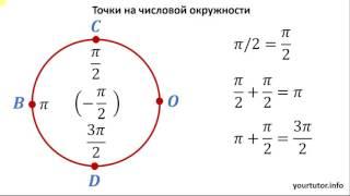 Точки на числовой окружности