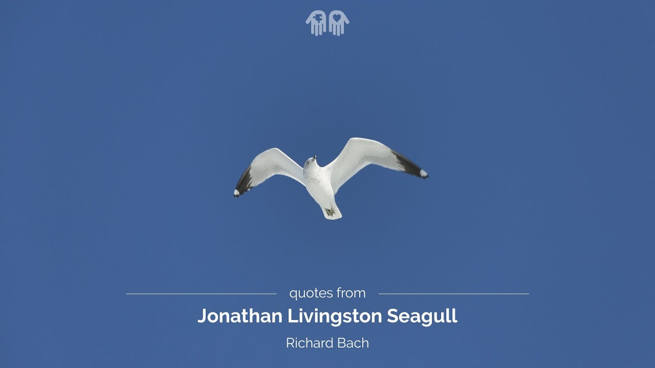 Make Quote Wallpaper Quotes From Jonathan Livingston Seagull Youtube