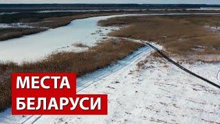Белорусские болота. Зачем сюда едут иностранцы? // Споровский заказник. Видео с дрона
