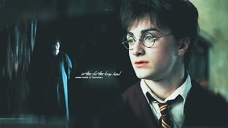 ◄ harry potter x tom riddle. | in this for the long haul