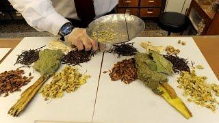 ботаники призывают проверять препараты китайской медицины (новости)