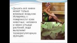 Значение воды для растений, животных и человека.AVI