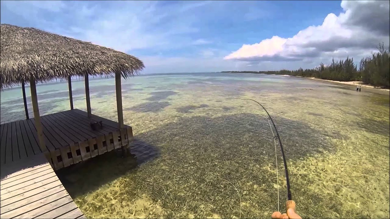 Flyfishing for bonefish cayman islands youtube for Grand cayman fishing