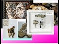 Поделки - Сколько стоят поделки из камней и что можно сделать из камня?