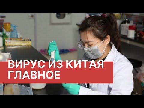 Вирус в Китае. Что важно знать. Новый китайский вирус. Последние новости о вирусе из Китая 2020