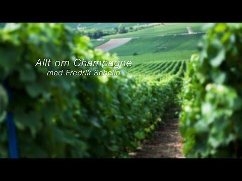 Champagne Jacquart med vinmakare Floriane Eznack – Intervju