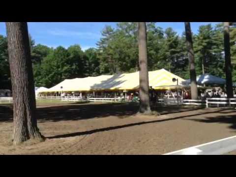 Allegro @ Saratoga Classic Derby 2014