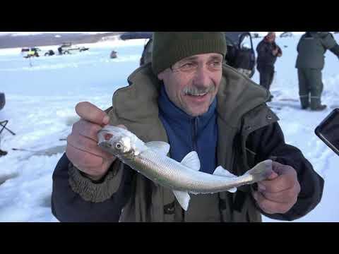 видео: Я вижу Сахалин!!! или День Рождения на рыбалке (подледная рыбалка мыс Лазарев)