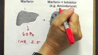 Drug Interactions #1