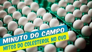 MINUTO O CAMPO - MITOS DO COLESTEROL NO OVO