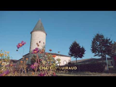 Château Guiraud Best