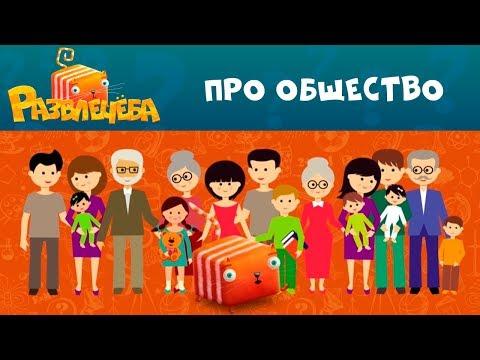 Развлечёба   Про общество 🤦♂🤷♀ Окружающий мир   СТС Kids