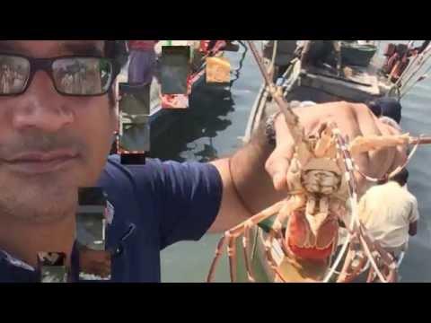 Visit to Ibrahim Haderi Fish Market Karachi and Day picnic trip to nearby Island