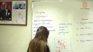8) Piagetin Temel Kavramları - Eğitim Bilimleri Gelişim Psikolojisi Dersi - Ayşegül Aldemir (2017)