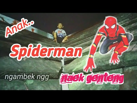 Boy spiderman ride tile !! from YouTube · Duration:  2 minutes 14 seconds