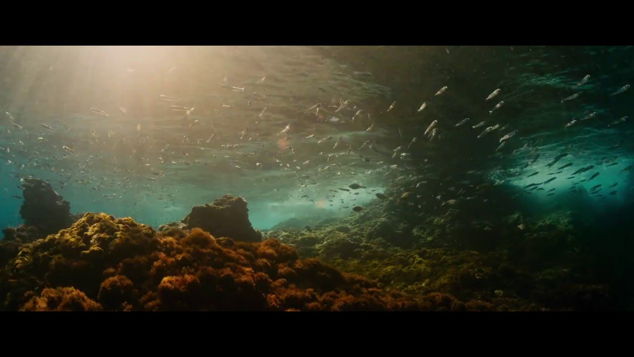 Evolution Official Uk Trailer In Cinemas 6th May Youtube