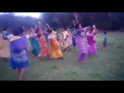 Bodo women picnic time dancing