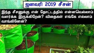 ஜனவரி 2019 சீசன் – இந்த சீசனில் நான் என்னவெல்லாம் வளர்க்க இருக்கிறேன்? விதைகள் எங்கே வாங்கினேன்?