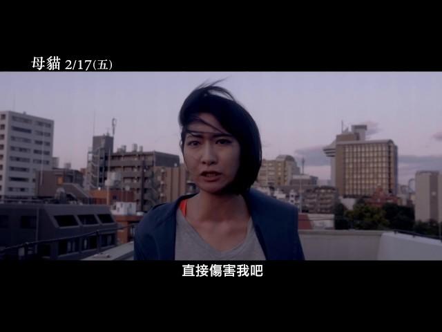 【母貓】Dawn of Flines 電影預告 2/17(五) 為愛而生