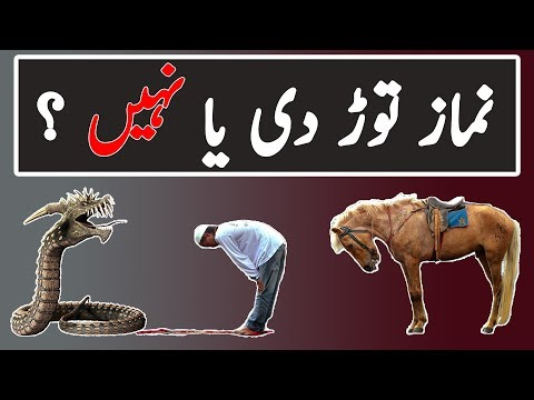 Namaz Parhtay hoa Sanp Samnay a jaye to | Islamic Way