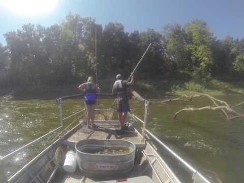 Wabash River Fish Population Monitoring