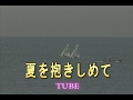 夏を抱きしめて (カラオケ) TUBE