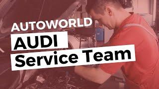Echipa de Service Autoworld Audi
