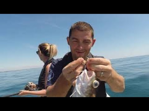 Sea Fishing Cornwall - Mixed Species Fishing With The Family.
