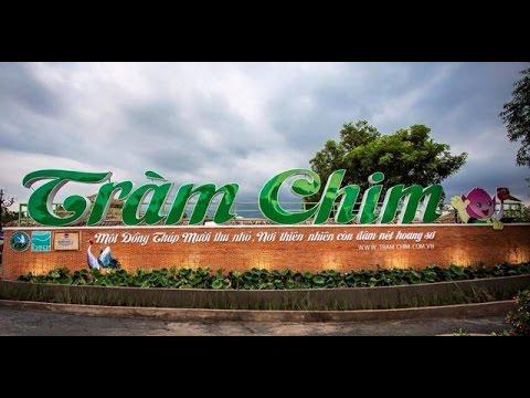 Vườn quốc gia Tràm Chim - Tam Nông, Đồng Tháp - Tram Chim National Park, Dong Thap province, Vietnam