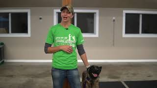 Play Care from Gulf Coast K9 Dog Training