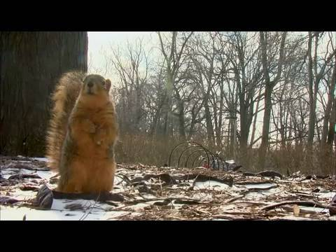 MSUToday: Spring will come to Michigan State