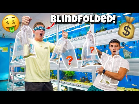 BUYING WHATEVER HE TOUCHES BLINDFOLDED!!