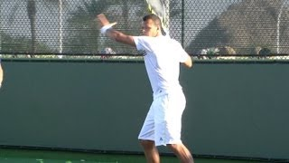 Jo Wilfried Tsonga Forehand and Backhand from Side View - Indian Wells 2013 - BNP Paribas Open