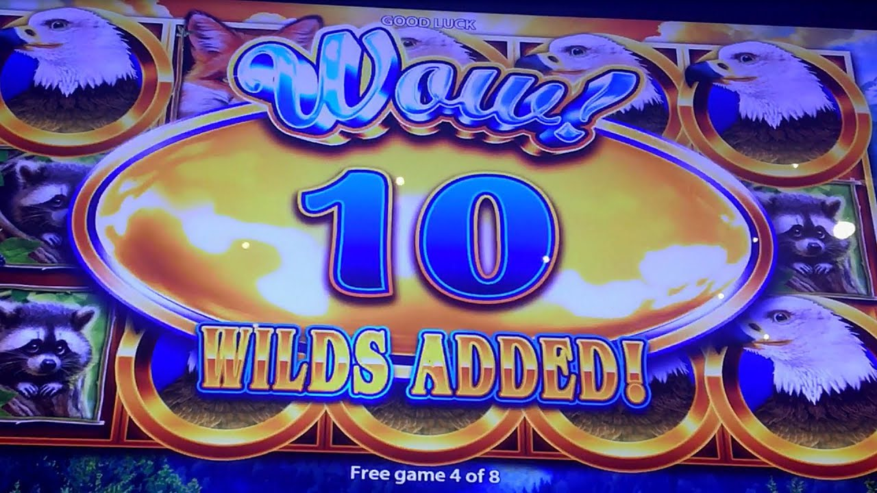 Biggest Slot Machine Payout
