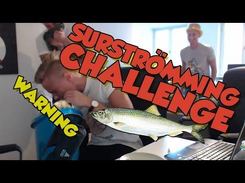 Surstromming Challenge with PUKE CASINO bro from Casinodaddy PUKE - 동영상