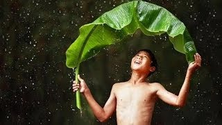 HÌNH HÀI CỦA MƯA (Những cơn mưa về ngang thành phố)