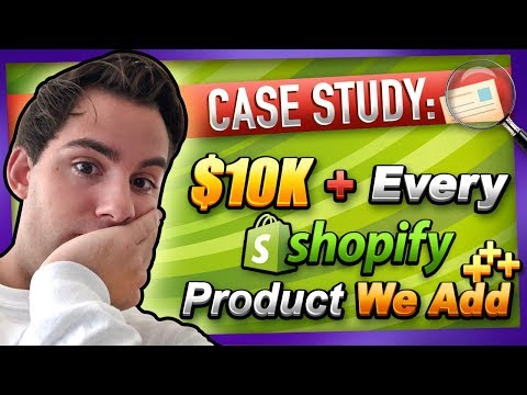 CASE STUDY: $2-$10K On New Products Added To My Shopify Dropshipping Store
