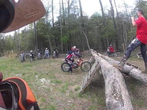 Ryan Young Tree Demo