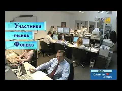 Биржа форекс или основные участники валютного рынка Forex