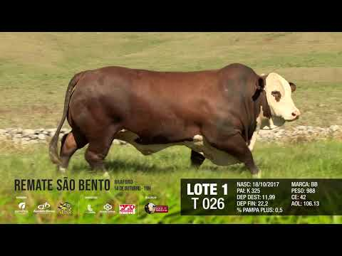 LOTE 01 T 026