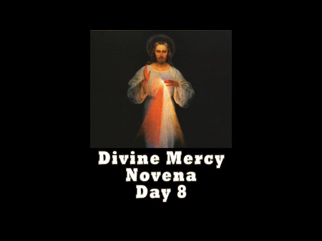 Divine Mercy Novena Day 8 with Father Mike Barry