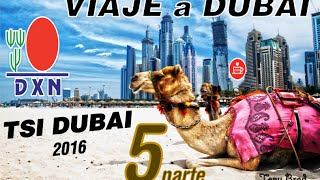 TSI DUBAI 2016 parte 5